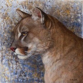cougar final