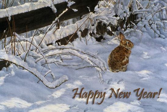 A New Year s Reflection Sandra Blair Art Blog