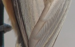 An enlarged detail of the titmouse.