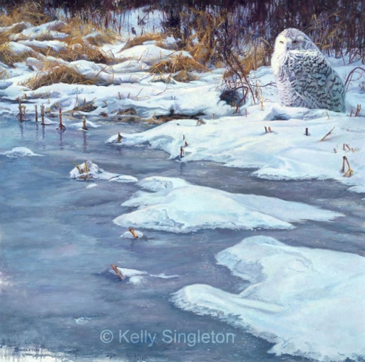 © Kelly Singleton, Arctic Visitor, 24x24 oil